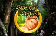 Играть на деньги в Secret Forest