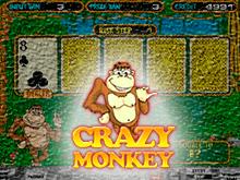 Играть в интернете в онлайн-слот Crazy Monkey